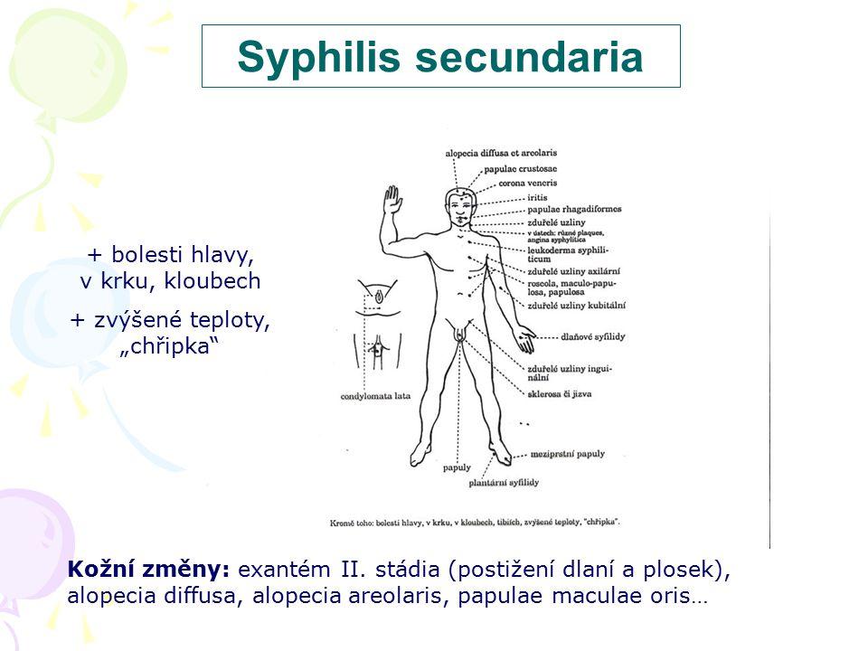 Syphilis secundaria + bolesti hlavy, v krku, kloubech