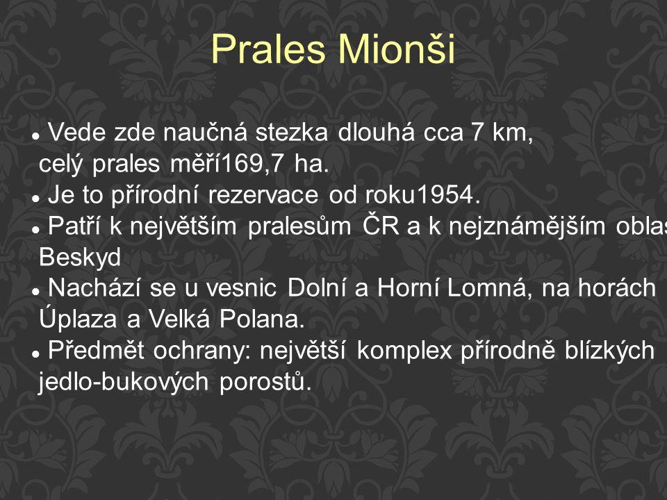 Prales Mionši Vede zde naučná stezka dlouhá cca 7 km,