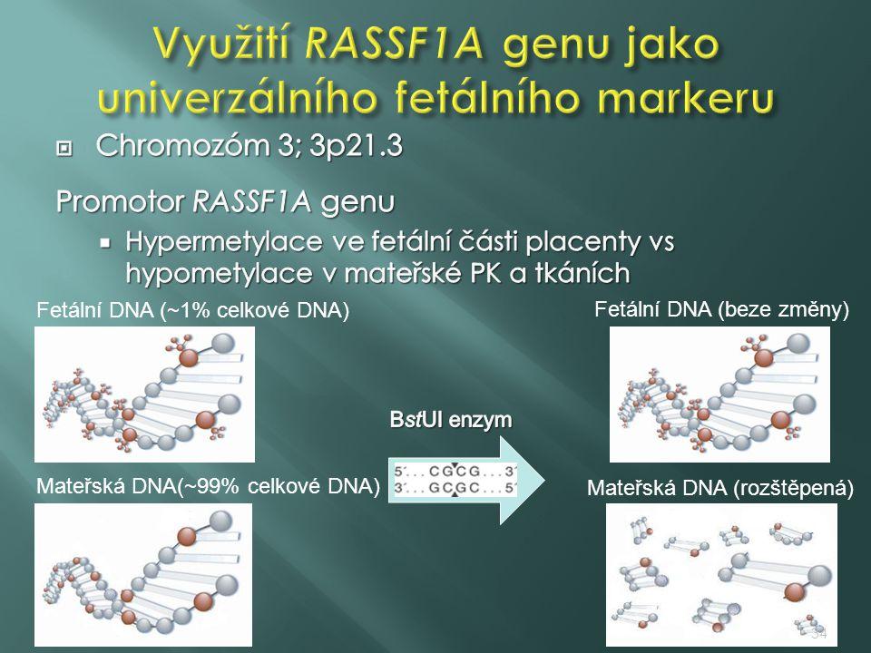 Využití RASSF1A genu jako univerzálního fetálního markeru