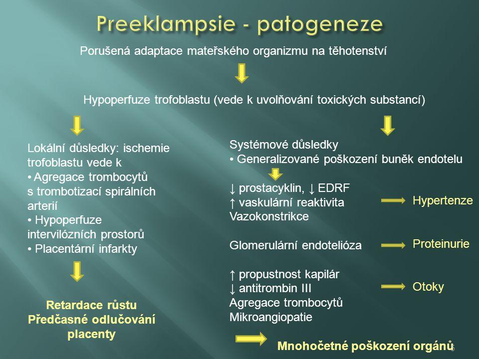 Preeklampsie - patogeneze