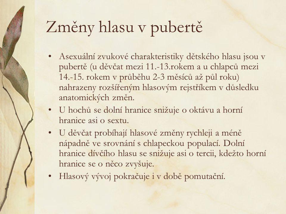 Změny hlasu v pubertě