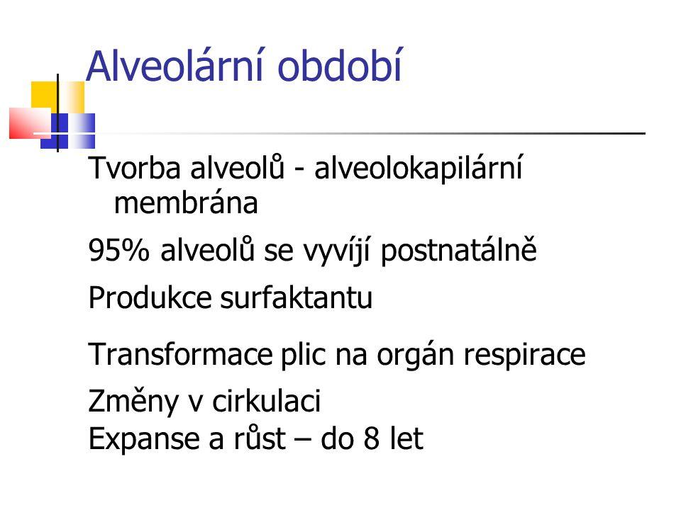 Alveolární období Tvorba alveolů - alveolokapilární membrána