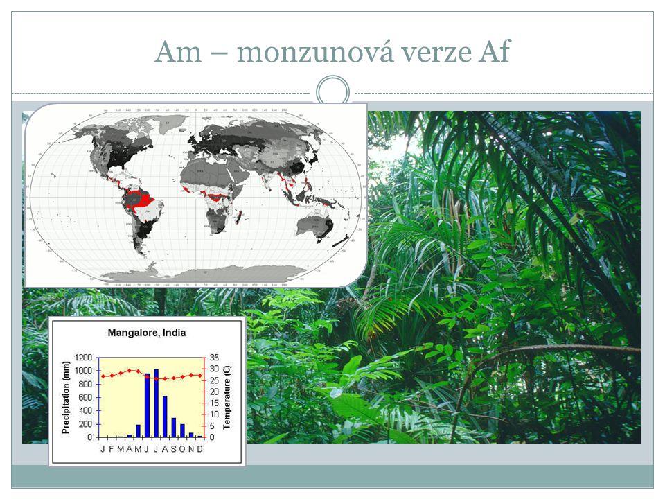 Am – monzunová verze Af