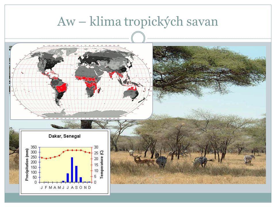 Aw – klima tropických savan