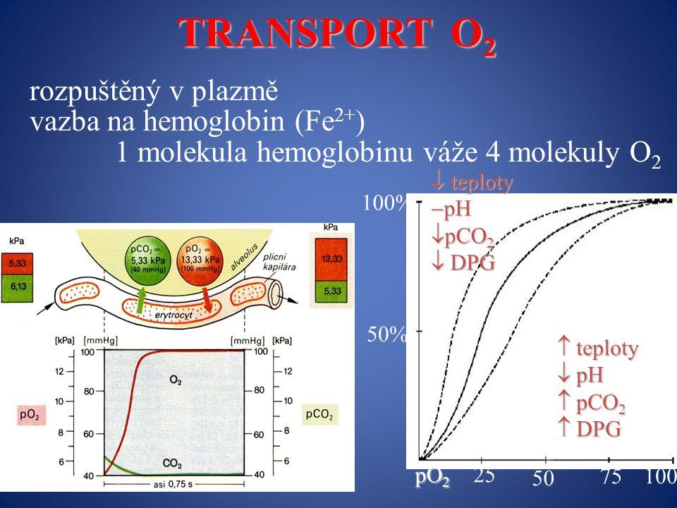 TRANSPORT O2 rozpuštěný v plazmě vazba na hemoglobin (Fe2+)
