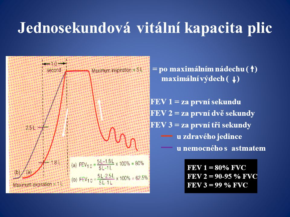 Jednosekundová vitální kapacita plic