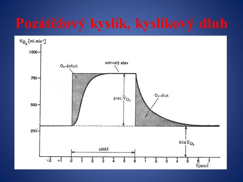 Pozátěžový kyslík, kyslíkový dluh
