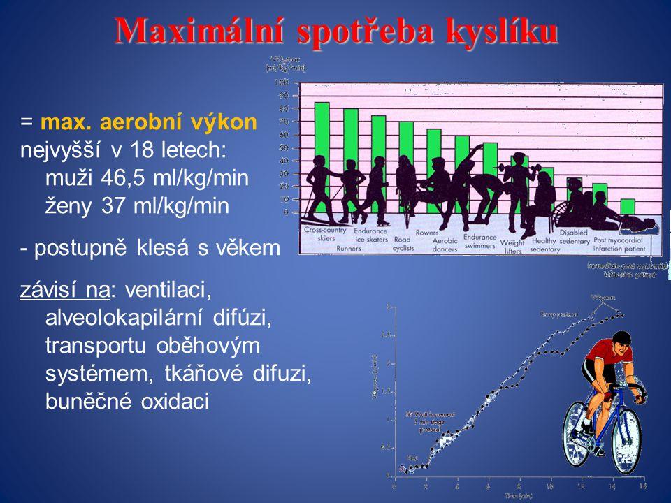 Maximální spotřeba kyslíku