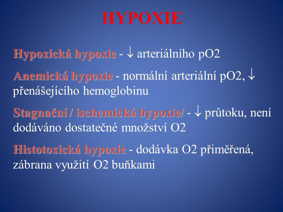 HYPOXIE Hypoxická hypoxie -  arteriálního pO2