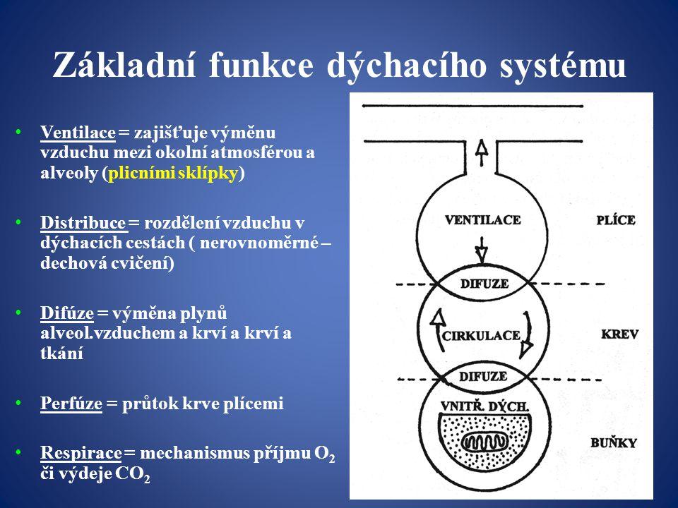 Základní funkce dýchacího systému