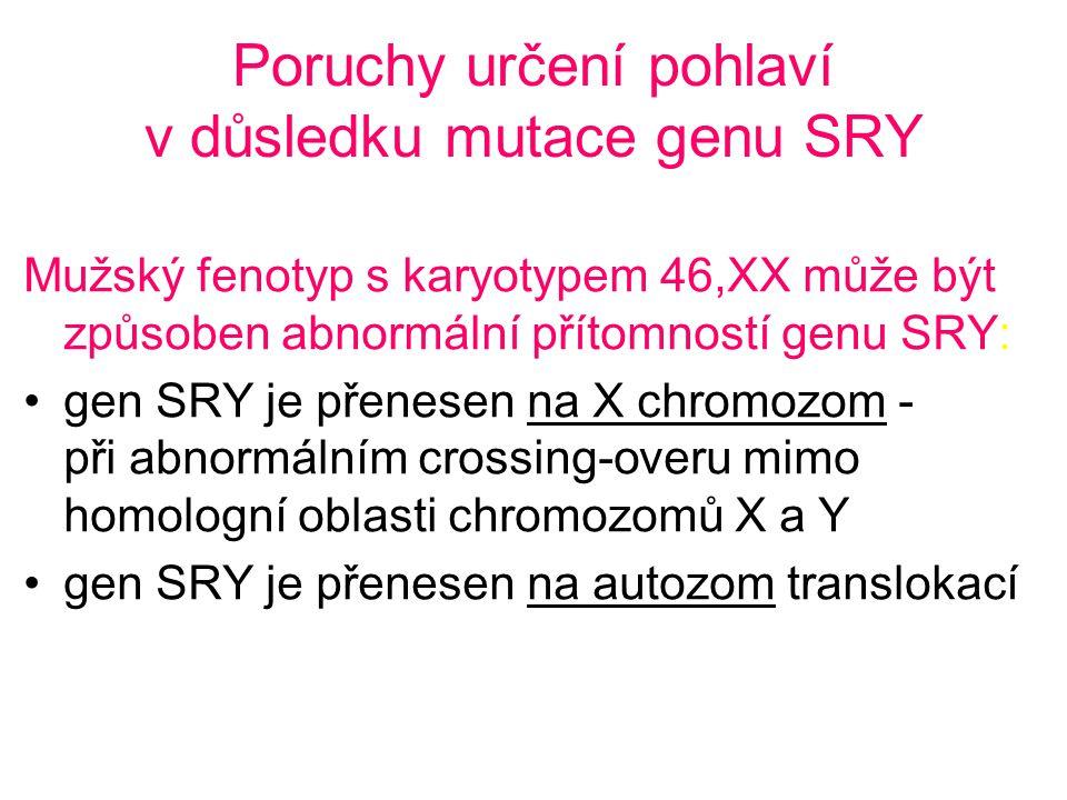 Poruchy určení pohlaví v důsledku mutace genu SRY