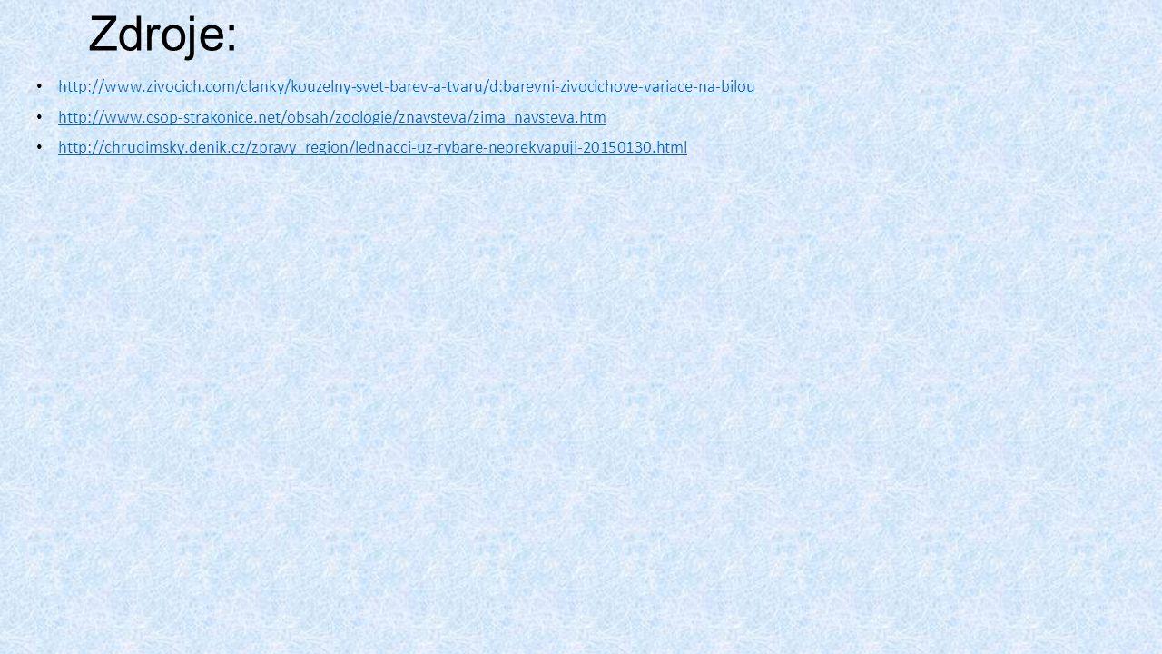 Zdroje: http://www.zivocich.com/clanky/kouzelny-svet-barev-a-tvaru/d:barevni-zivocichove-variace-na-bilou.