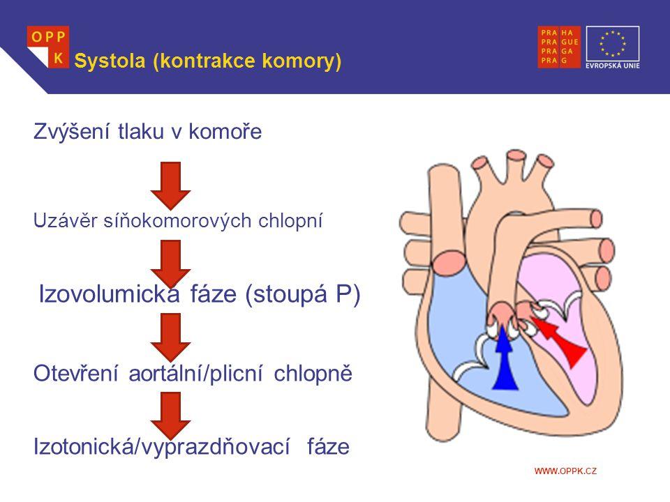 Systola (kontrakce komory)