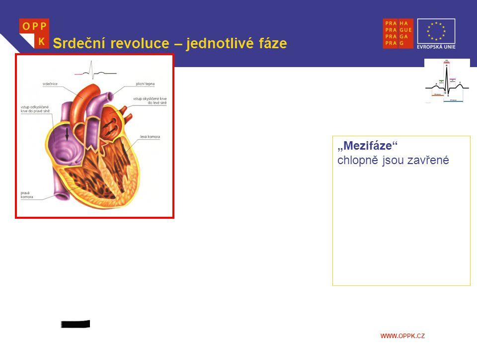 Srdeční revoluce – jednotlivé fáze