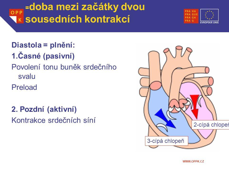 Srdeční revoluce z pohledu komory =doba mezi začátky dvou sousedních kontrakcí