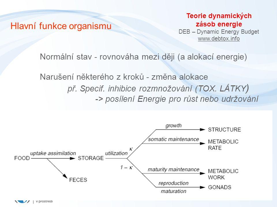 Teorie dynamických zásob energie