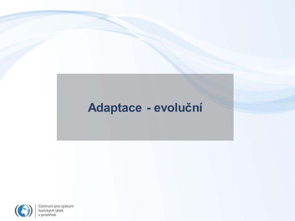Adaptace - evoluční