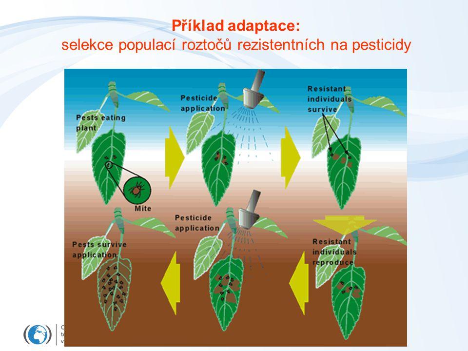 Příklad adaptace: selekce populací roztočů rezistentních na pesticidy