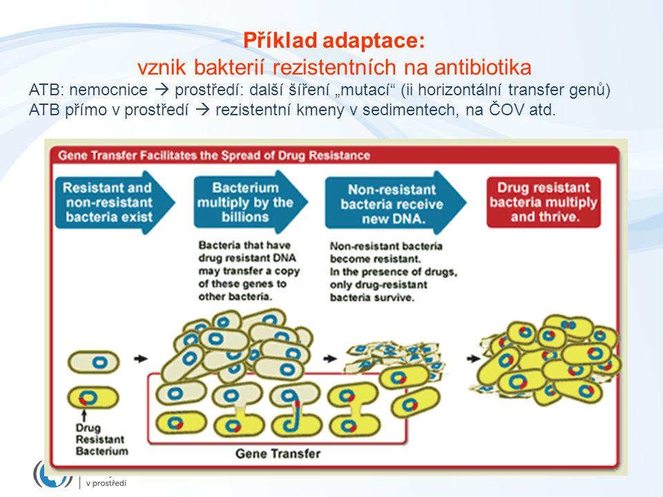 Příklad adaptace: vznik bakterií rezistentních na antibiotika