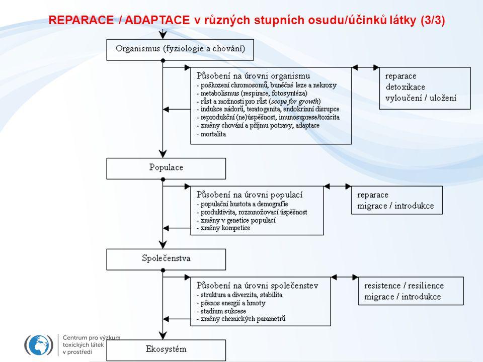 REPARACE / ADAPTACE v různých stupních osudu/účinků látky (3/3)
