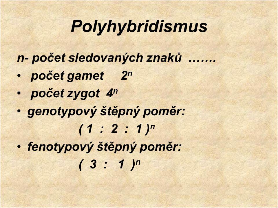 Polyhybridismus n- počet sledovaných znaků ……. počet gamet 2n