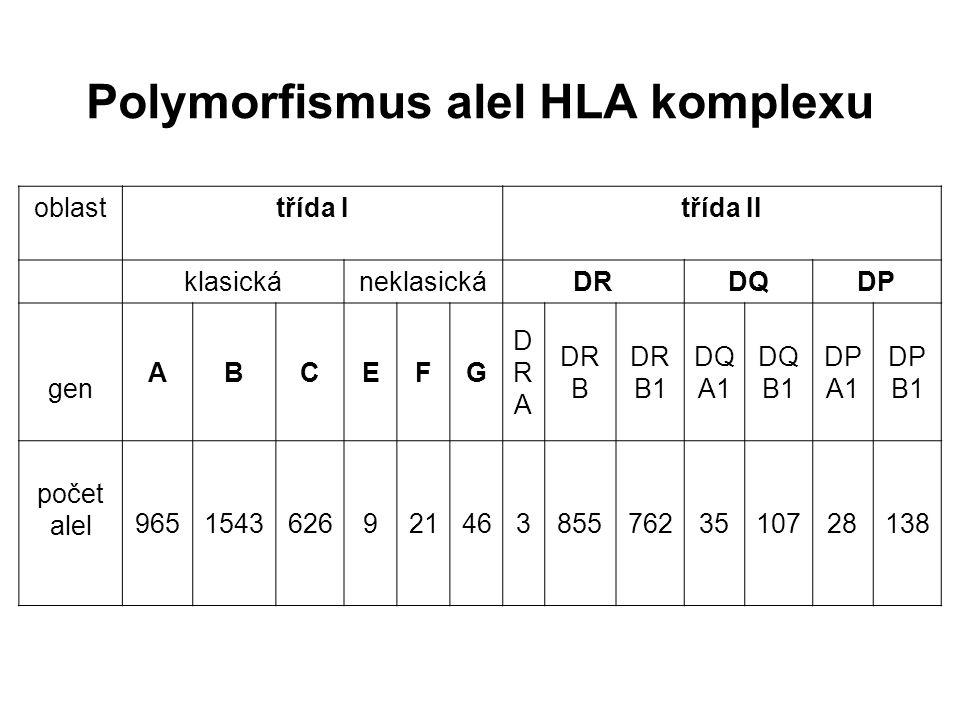 Polymorfismus alel HLA komplexu