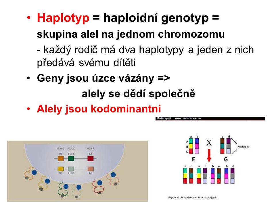 Haplotyp = haploidní genotyp =