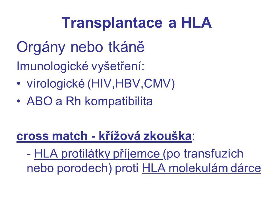 Transplantace a HLA Orgány nebo tkáně Imunologické vyšetření: