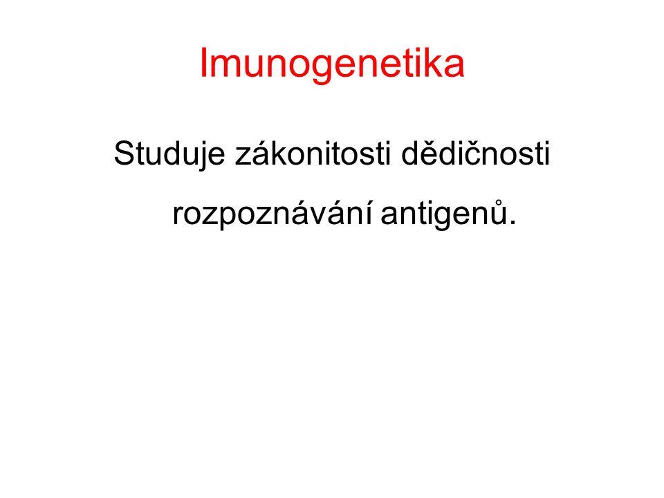 Studuje zákonitosti dědičnosti rozpoznávání antigenů.