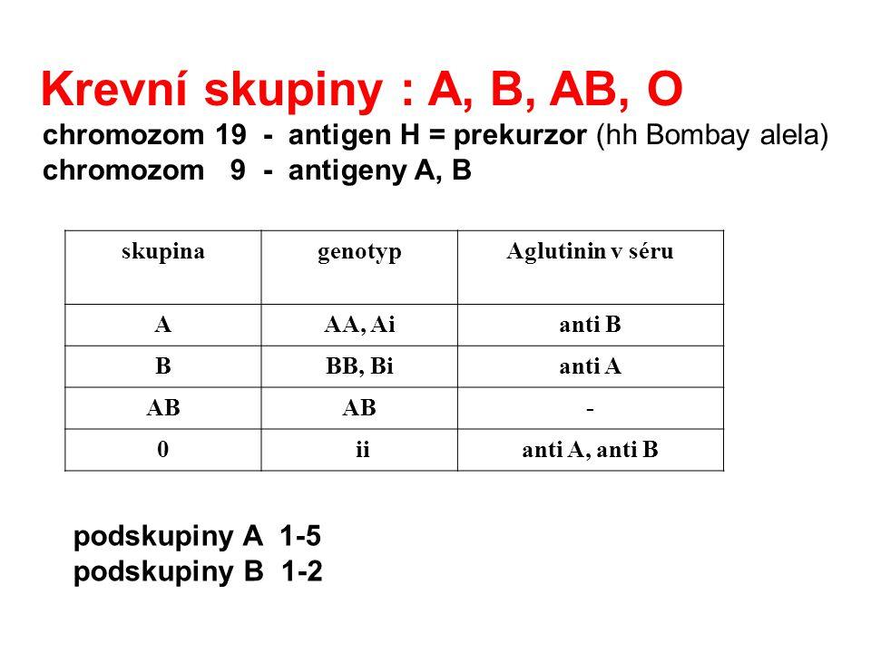 Krevní skupiny : A, B, AB, O chromozom 19 - antigen H = prekurzor (hh Bombay alela) chromozom 9 - antigeny A, B.