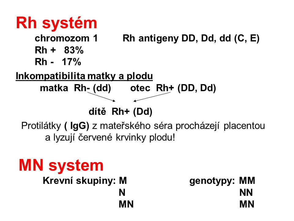 Rh systém chromozom 1 Rh antigeny DD, Dd, dd (C, E) Rh + 83% Rh - 17%