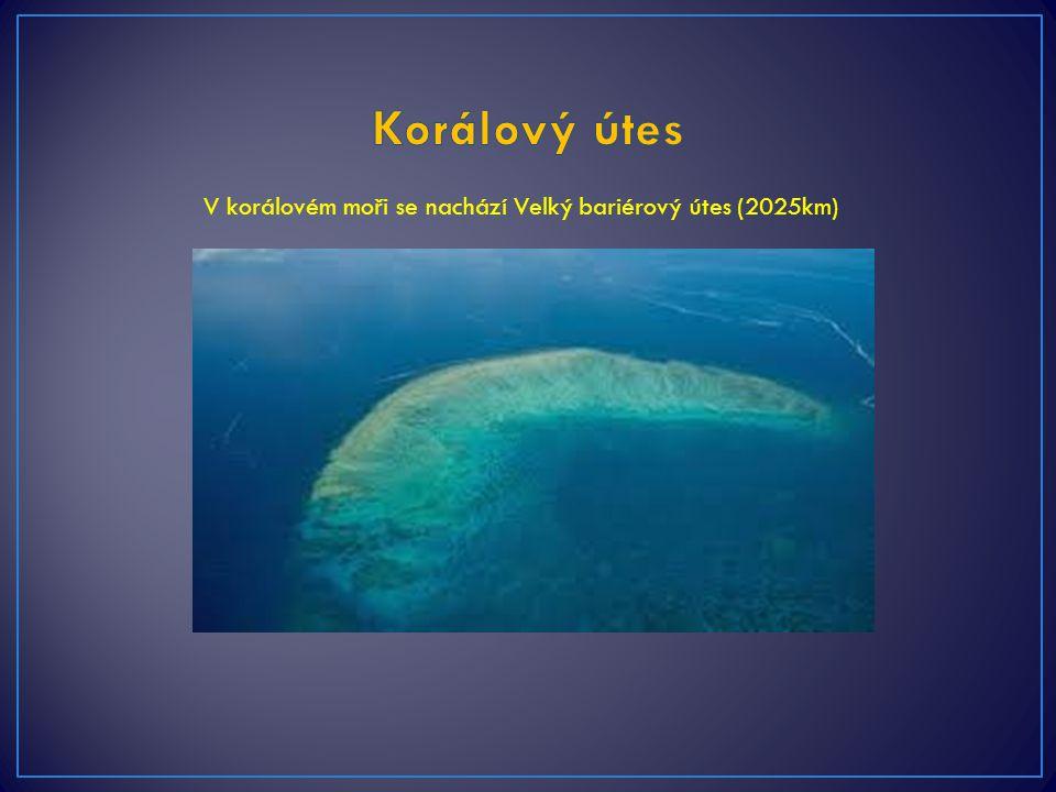 Korálový útes V korálovém moři se nachází Velký bariérový útes (2025km)