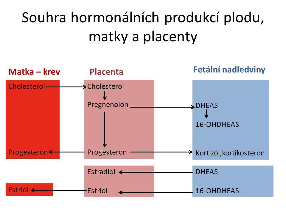 Souhra hormonálních produkcí plodu, matky a placenty