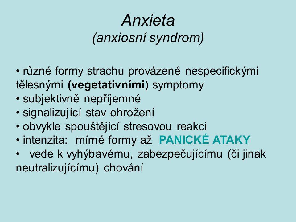 Anxieta (anxiosní syndrom)