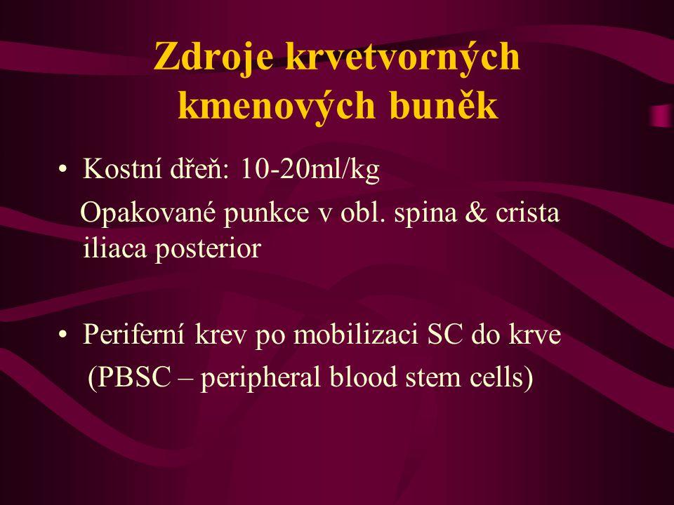 Zdroje krvetvorných kmenových buněk