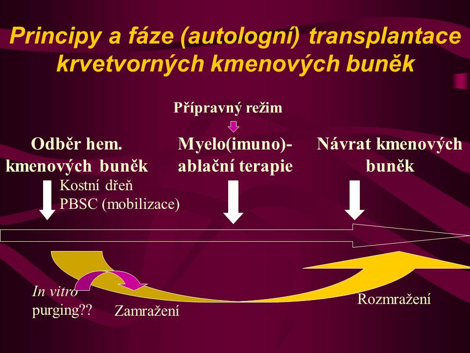 Principy a fáze (autologní) transplantace krvetvorných kmenových buněk