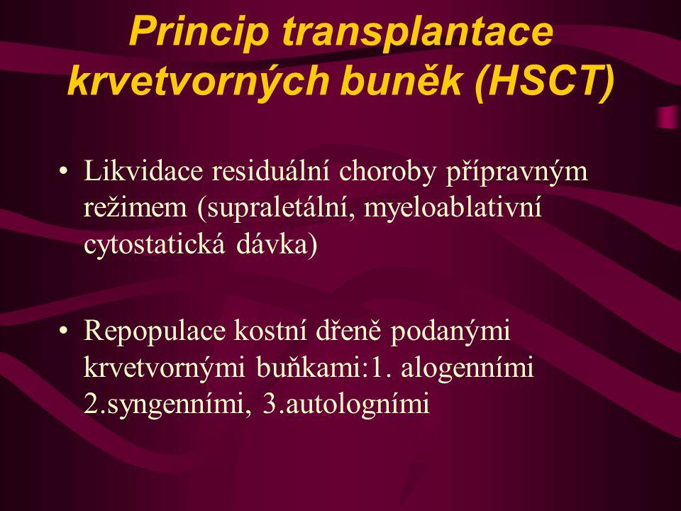 Princip transplantace krvetvorných buněk (HSCT)