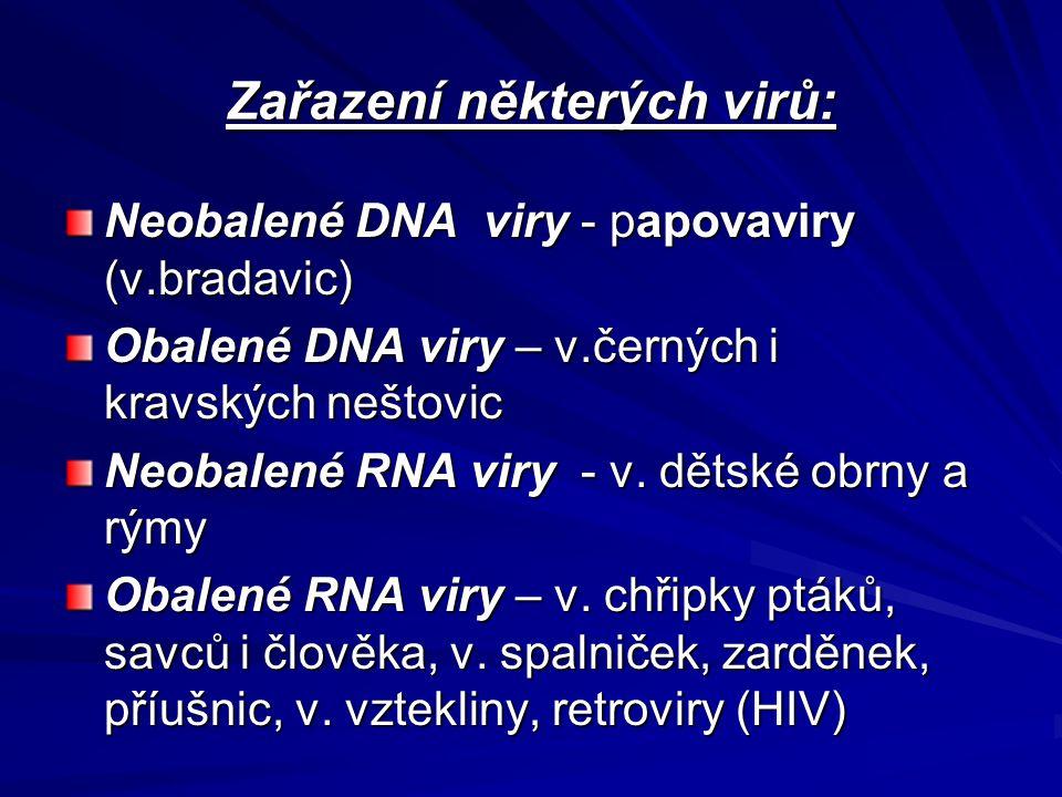 Zařazení některých virů: