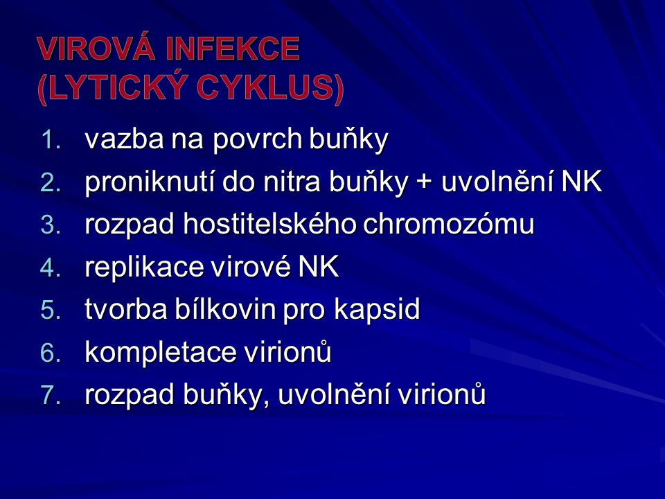 VIROVÁ INFEKCE (lytický cyklus)