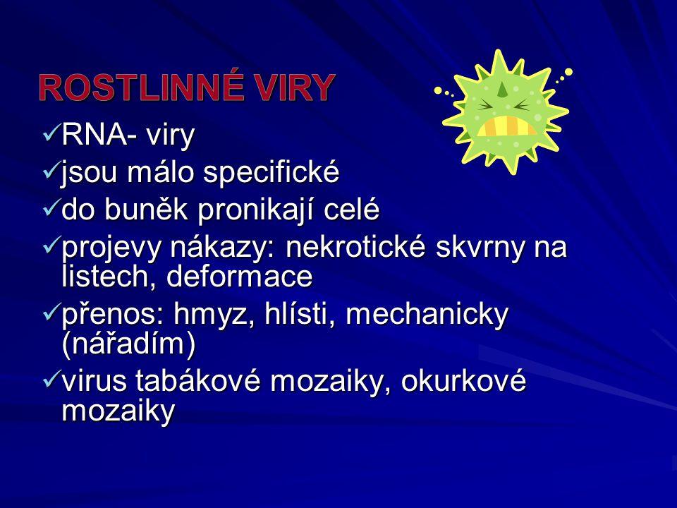 ROSTLINNÉ VIRY RNA- viry jsou málo specifické do buněk pronikají celé
