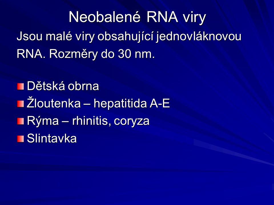 Neobalené RNA viry Jsou malé viry obsahující jednovláknovou