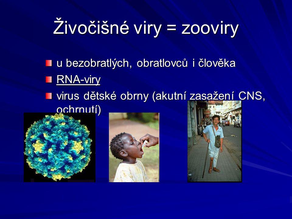 Živočišné viry = zooviry