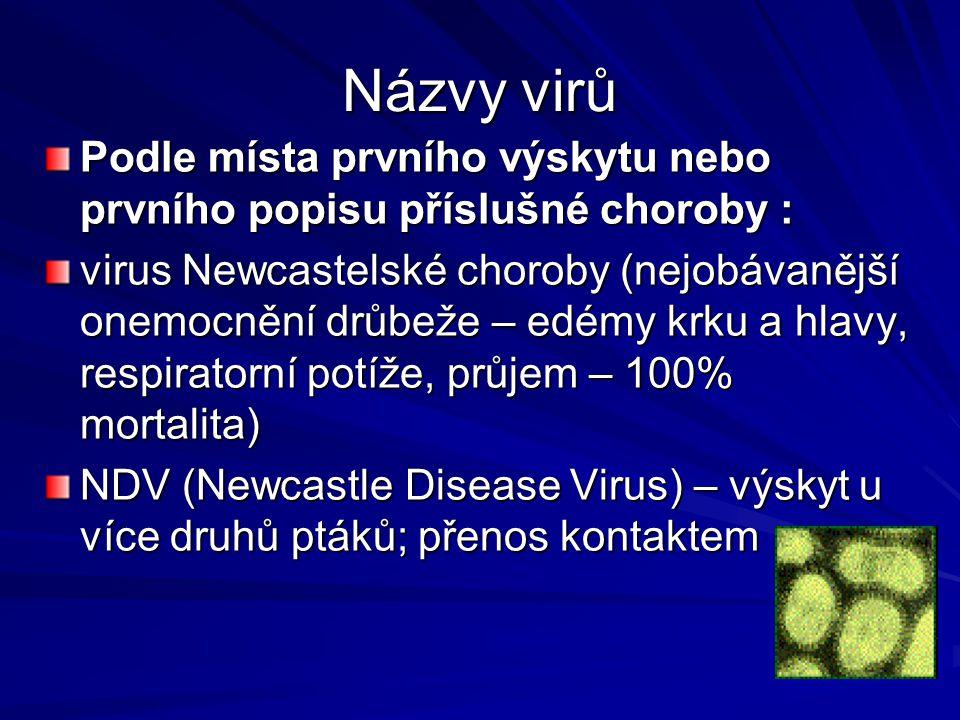 Názvy virů Podle místa prvního výskytu nebo prvního popisu příslušné choroby :
