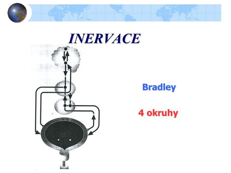 INERVACE Bradley 4 okruhy