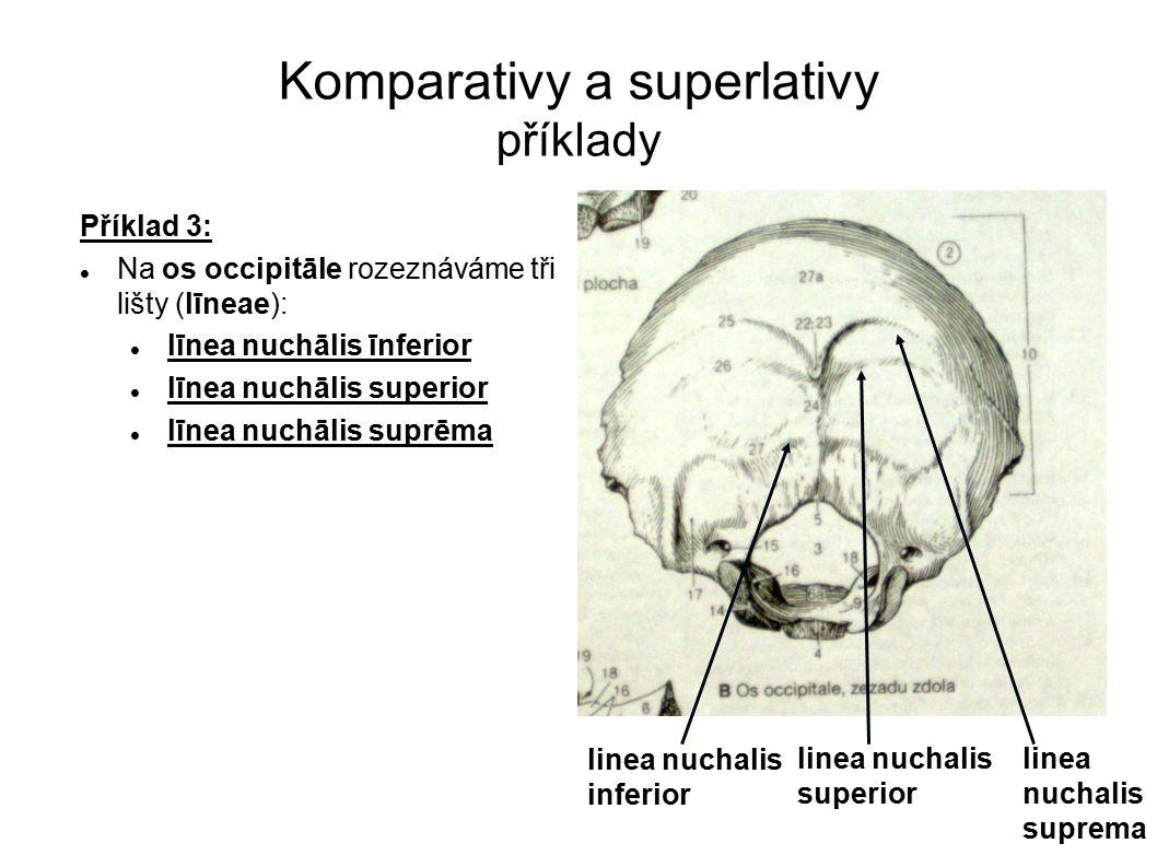 Komparativy a superlativy příklady
