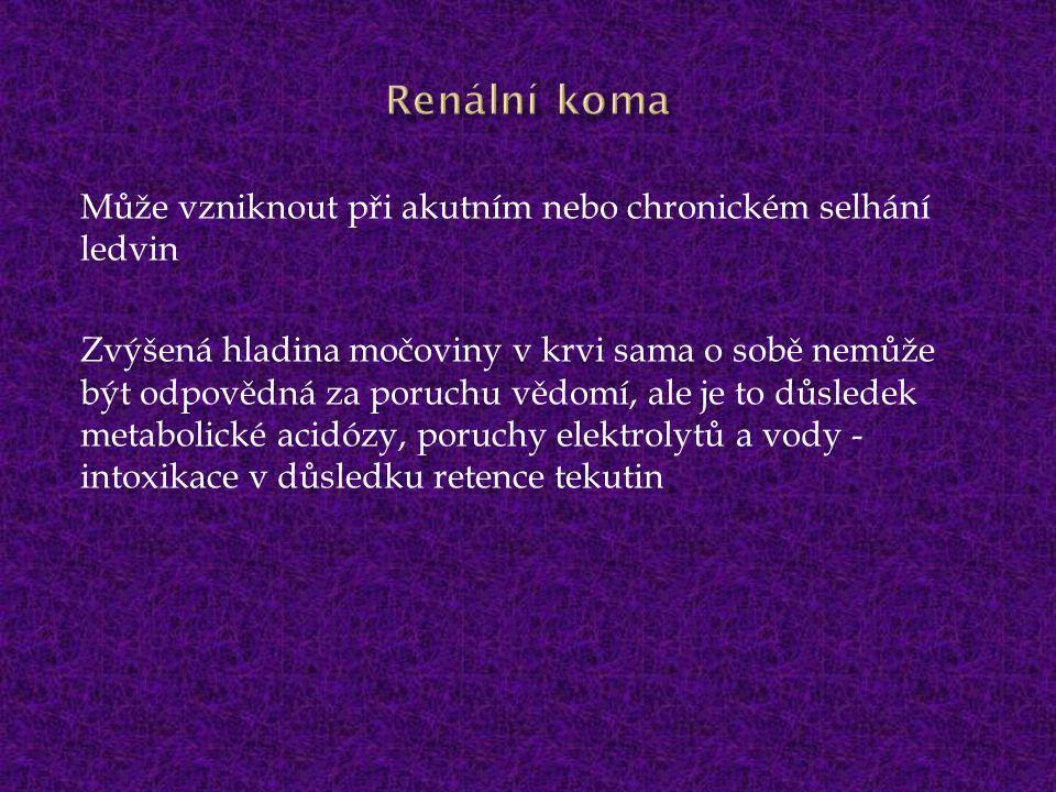 Renální koma