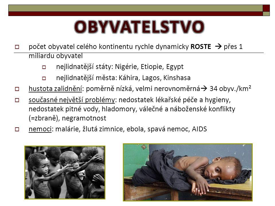 obyvatelstvo počet obyvatel celého kontinentu rychle dynamicky ROSTE  přes 1 miliardu obyvatel. nejlidnatější státy: Nigérie, Etiopie, Egypt.