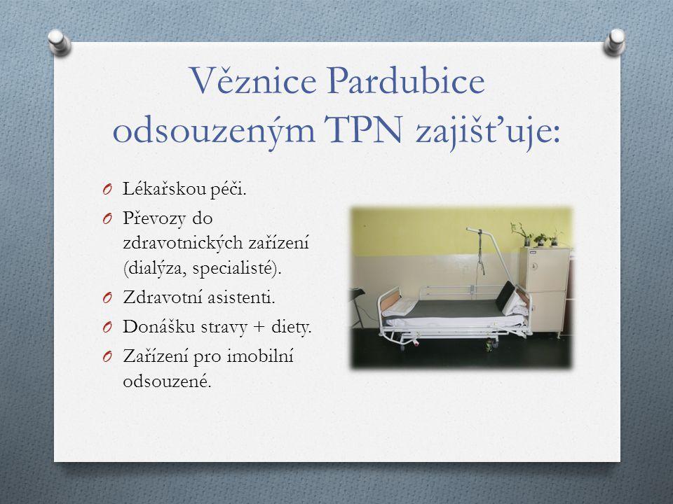 Věznice Pardubice odsouzeným TPN zajišťuje: