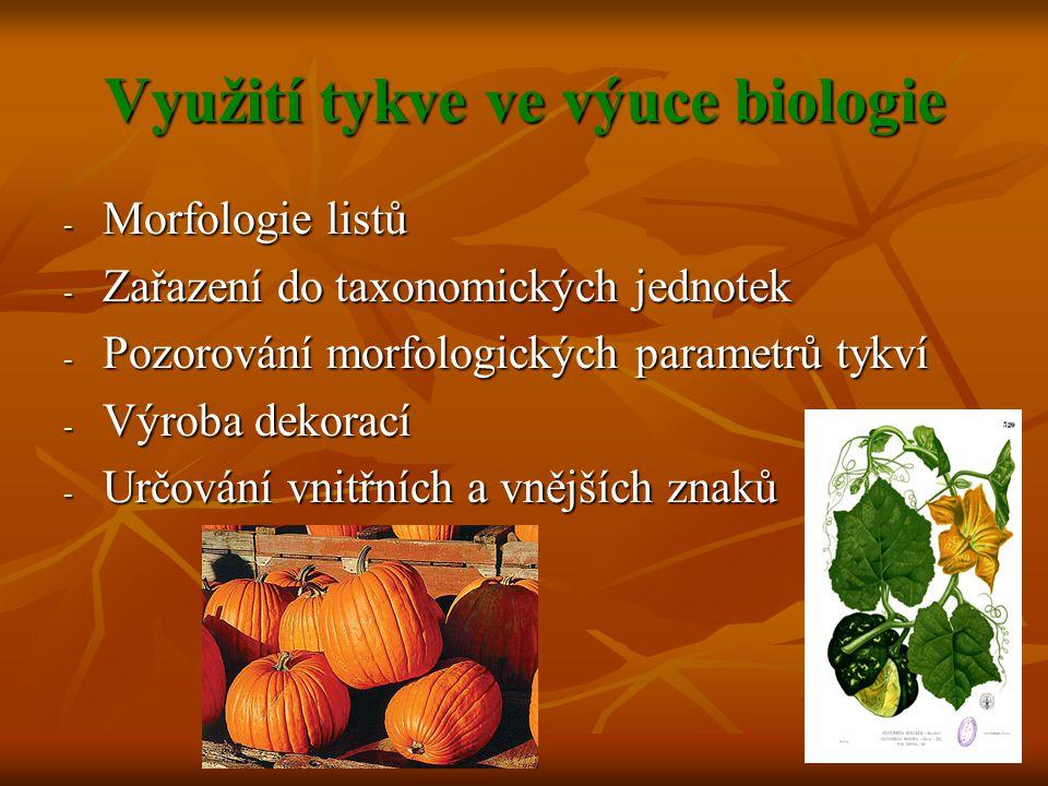 Využití tykve ve výuce biologie