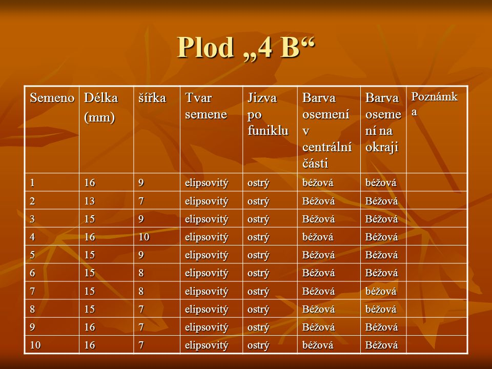 "Plod ""4 B Semeno Délka (mm) šířka Tvar semene Jizva po funiklu"